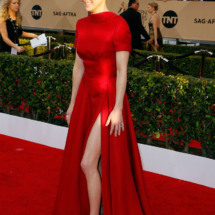 anna-faris-formal-red-carpet-dress-sag-awards-2016